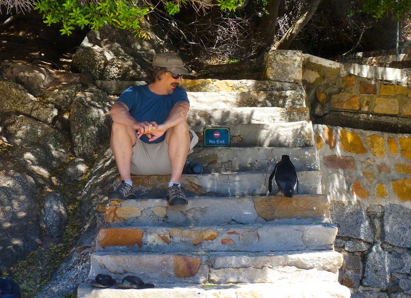 Hopalong penguin delights John
