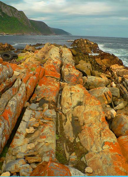 Tsitsikamma National Park. Incredible geology happening here.