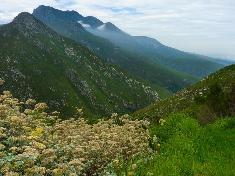 Mountain pass between George and Oudtshoorn