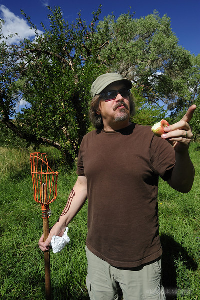 Picking apples in Capital Reef's heirloom orchards, planted by early Mormon settlers. You can eat all you like for free, or buy for $1/lb on honor system. John holds an ingenious apple picking tool.