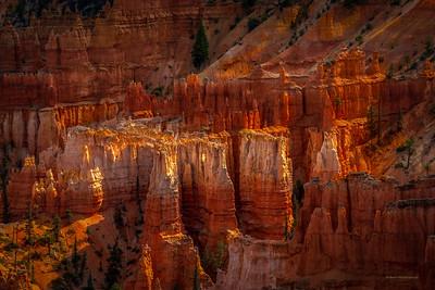 Hodoo Hilite at Bryce Canyon