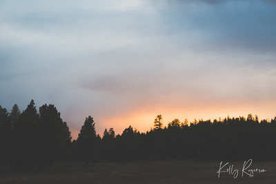Just beyond those trees, the sun says goodbye to the day. Bryce Canyon National Park.