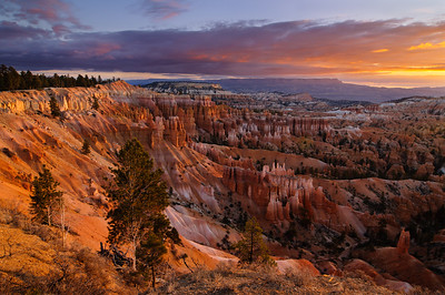 """Reflecting on Earth"" - Bryce Canyon National Park, UT"