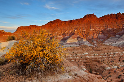 """Golden Glow"" - Grand Staircase Escalante National Monument, UT"