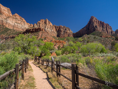Walking in Zion