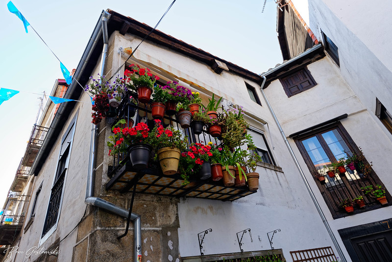 A balcony with colourful pot plants