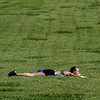 Flat Out In the Grass