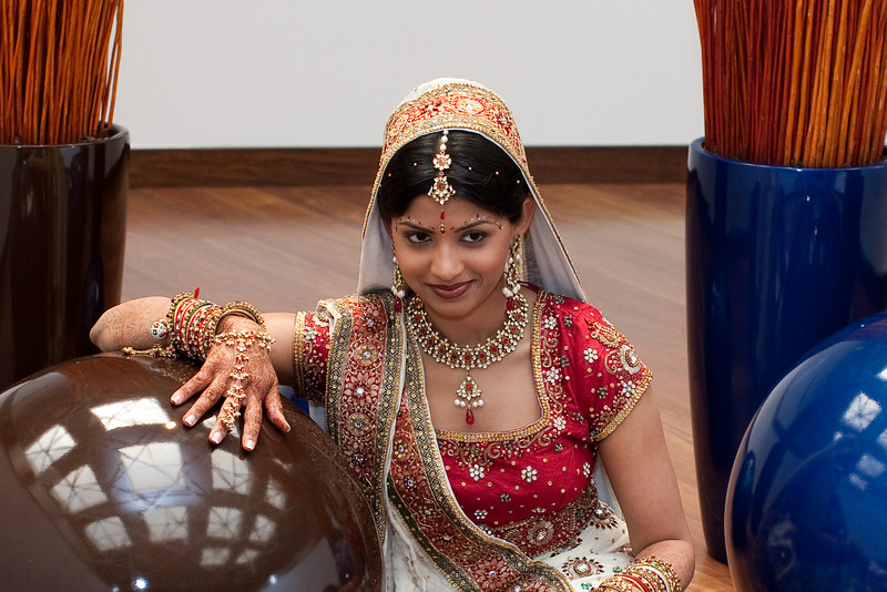 Indian Wedding (5)