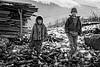 Tenzin Dorji - Rinchen Khando