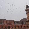 Wazir Khan mosque, Lahore
