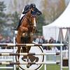 CSI 3 étoiles-Horseware-Le Touquet_058