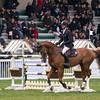 CSI 3 étoiles-Horseware-Le Touquet_122