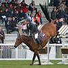 CSI 3 étoiles-Horseware-Le Touquet_126