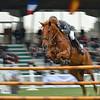 CSI 3 étoiles-Horseware-Le Touquet_161