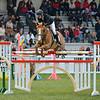 CSI 3 étoiles-Horseware-Le Touquet_097
