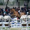 CSI 3 étoiles-Horseware-Le Touquet_081