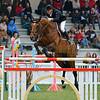 CSI 3 étoiles-Horseware-Le Touquet_111