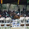 CSI 3 étoiles-Horseware-Le Touquet_072