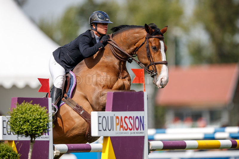 Jumping International 3*** et 1* du Touquet Paris Plage © 2019 Olivier Caenen, tous droits reserves