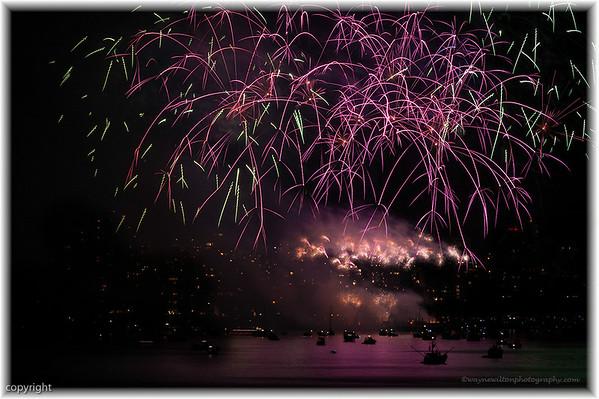 Fireworks_4282