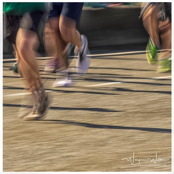 Running in the Sun Run
