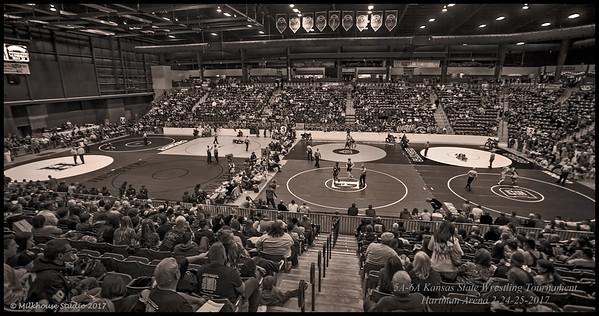 Hartman Arena BW