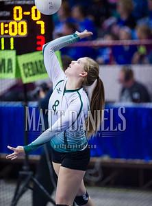 2015 Colorado state high school volleyball tournament at the Denver Coliseum, November 13-14, 2015.