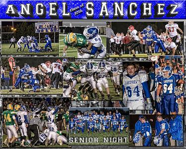 Angel Sanchez 16 X 20 inch Sports Collage_1500