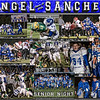 Angel Sanchez 16 X 20 inch Sports Collage_1500