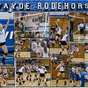 Wayde Rodehorst_2013_ 16 X 20 inch Sports Collage