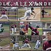 16 x 20 Baseball Sports Collage - Cole Alexander