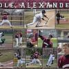 16 x 20 Baseball Sports Collage - Cole Alexander