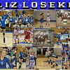 Liz Loseke 20 x 24 Sports Collage_2013