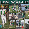 Alex Wallick 11 x 14 Collage_v2