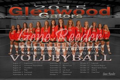 Varsity Volleyball 2015 c