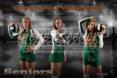 Volleyball Seniors attitude