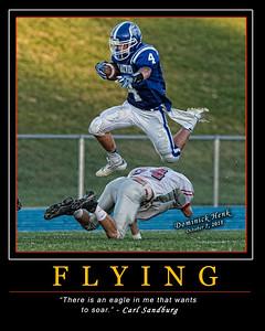 Dominick Henk Flying 16 x 20