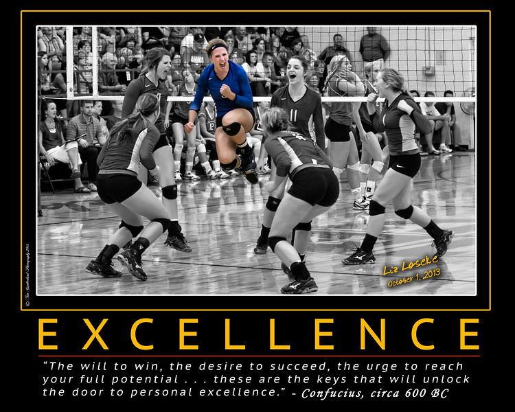 Liz Loseke Motivational Poster 16 x 20