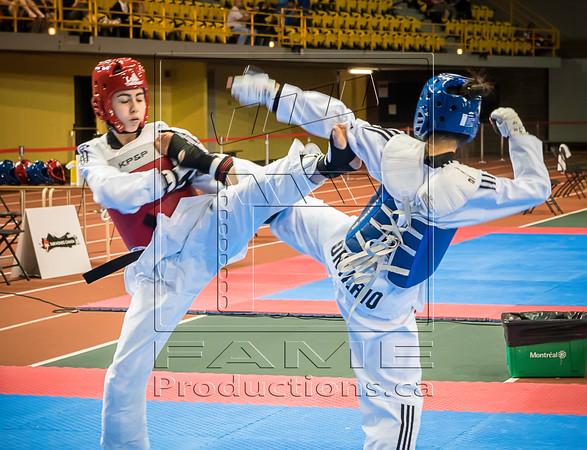 Taekwondo Champ Can_2015_06_26_0999 copy