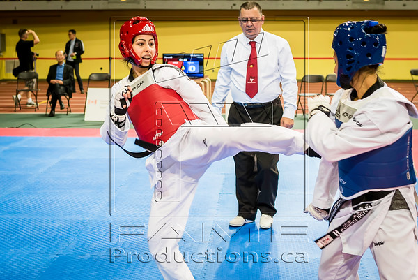 Taekwondo Champ Can_2015_06_26_1469 copy