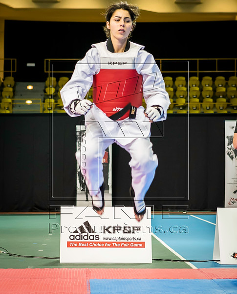Taekwondo Champ Can_2015_06_26_1435 copy