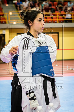 Taekwondo Champ Can_2015_06_26_1608 copy