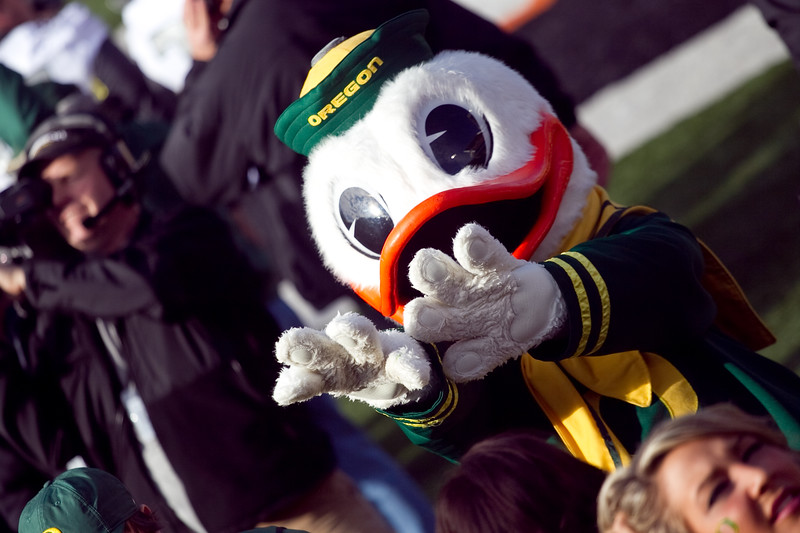 """""""Puddles"""" The University of Oregon Mascot pumps up the crowd Prior to the 114th annual Civil War. UO Defeated OSU 37-20 in the game at Reser Stadium in Corvallis Oregon."""