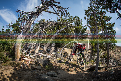 Another shot of Sam Markling, this time near the top of stage #3 - Last Chance.  The back side of Mt Bachelor is more rugged and steep as stages 1 and 2 and it includes these awesome trees that have endured many harsh winters at 2000m.