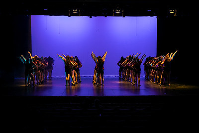 NNHS-Orchesis_001