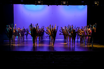 NNHS-Orchesis_005