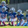 Bills v Patriots-2918