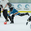 20081214_Broomball  091