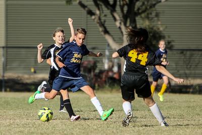 2015-2016 HTCS Soccer Gold