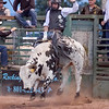 Lane Frost Challenge<br /> August 10th, 2013<br /> Lyman, Wyoming